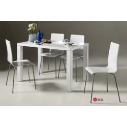 Ensemble Table et 4chaises de salle à manger